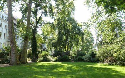 Arundel & Ladbroke Gardens, W11